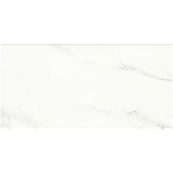 东鹏瓷砖瓷片雅士白CLN63240 600*300