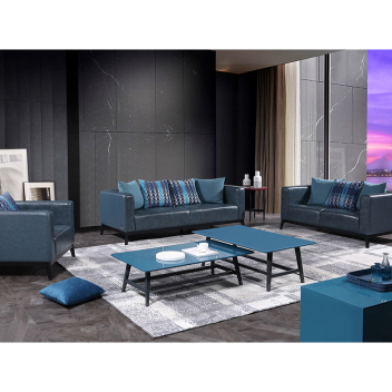 丽星城市客厅系列 沙发2Y852(1+2+3)
