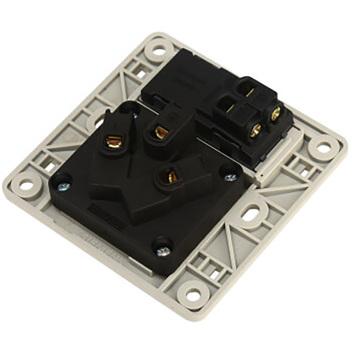西门子映彩系列一位带单控开关10A三极插座5UB82833NC09月石灰